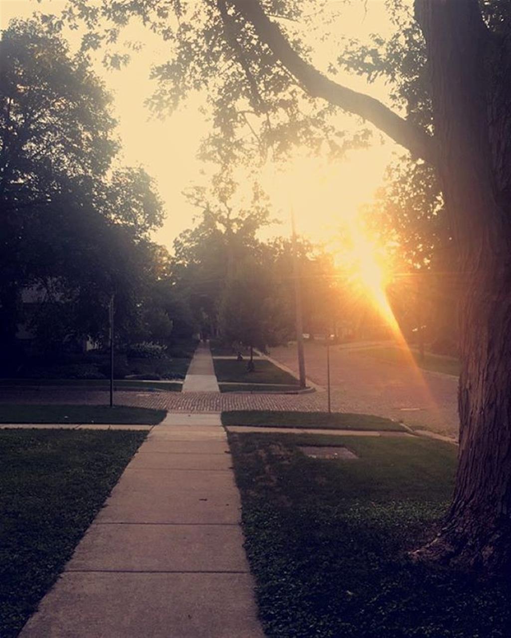 Memories of warm walks through warm nights. #summernights #dupagecounty #downersgrove #bairdwarner #leadingrelocal #chicagosuburbs #chicagoland