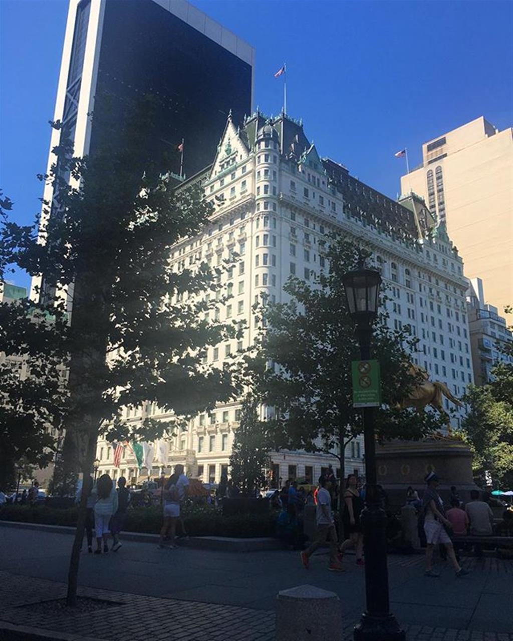 Looking for Elouise #newyork #newyork #leadingrelocal #architecture