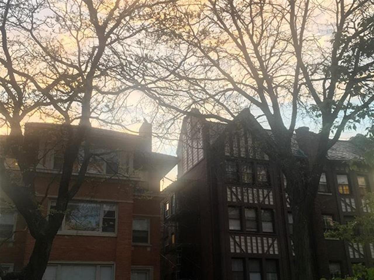 Tutor style in #edgewater #leadingrelocal #chicago #bairdwarner