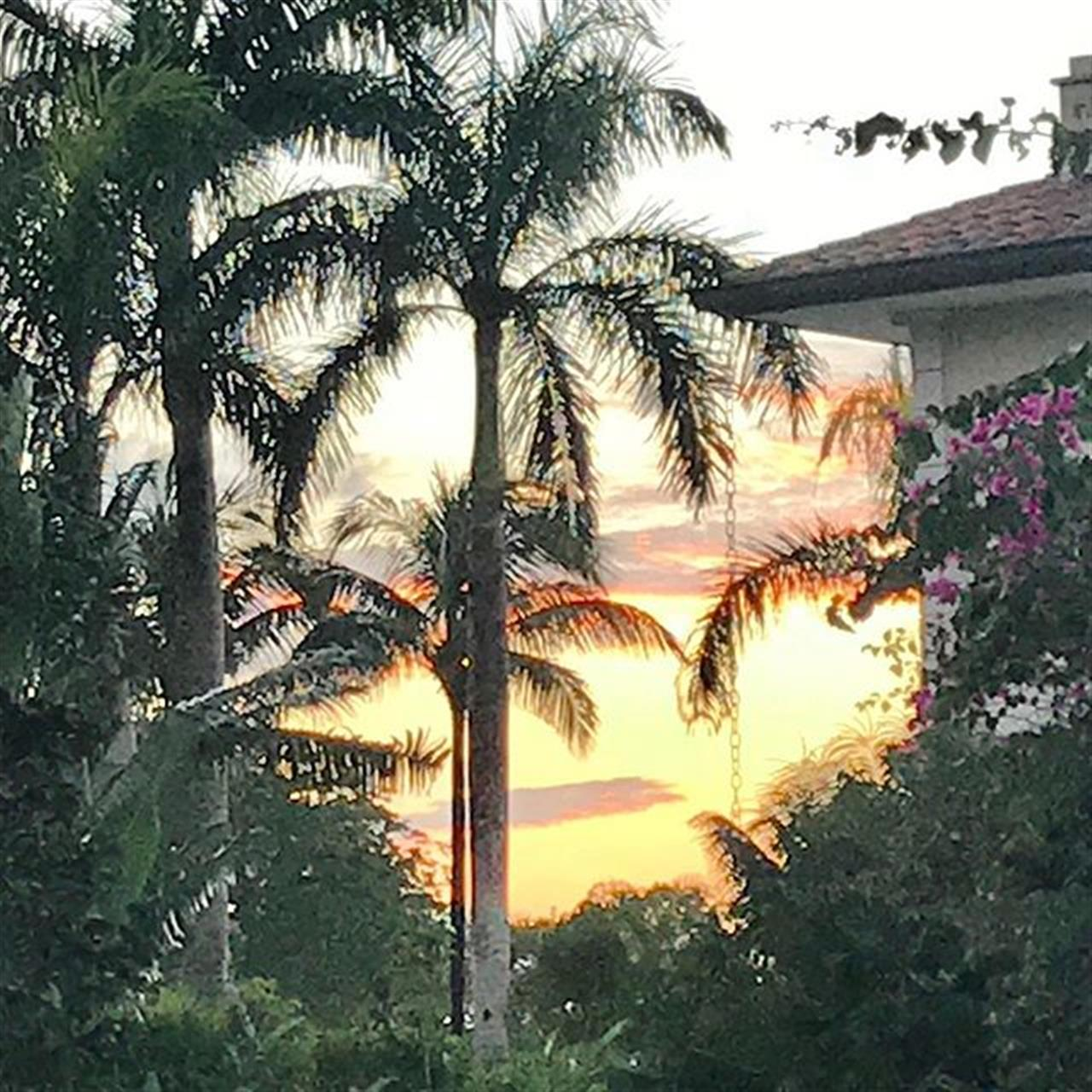Love Caribbean Sunsets ??? #caribbean #sunset #sunsetlover #tropicalparadise #investmentproperty #dominicanrepublic #vacationrentals #vacationtime #caribbeandream #leadingrelocal Contact us! We have homes for rent and for sale.