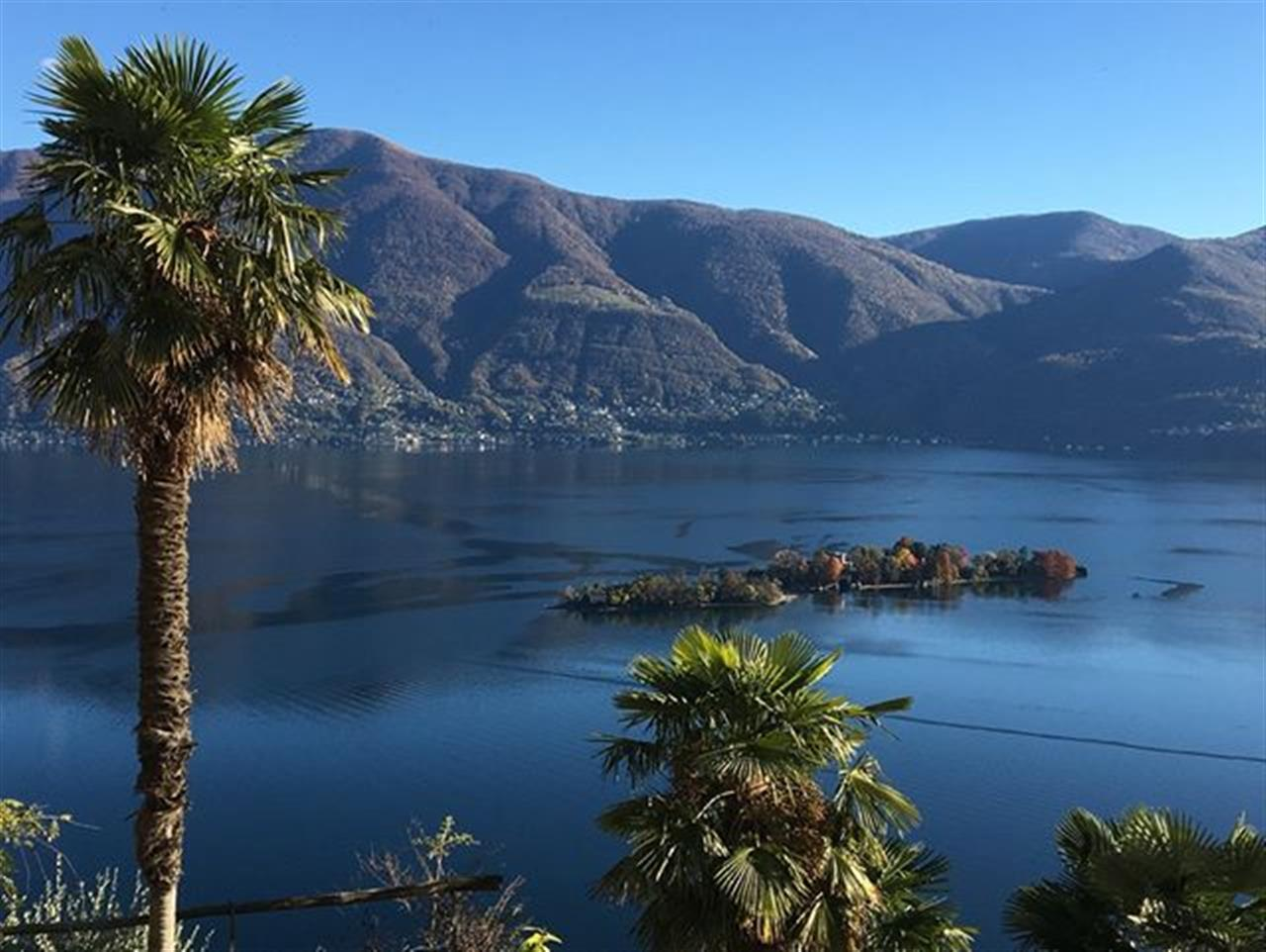 Autumn view to #LakeMaggiore, #Ticino, #Switzerland. #luxuryrealestate #inlovewithswitzerland #luxurylife #luxurylifestyle #christiesinternationalrealestate #luxuryportfolio #wetagconsulting #leadingre #ChristiesHomes #LeadingRElocal