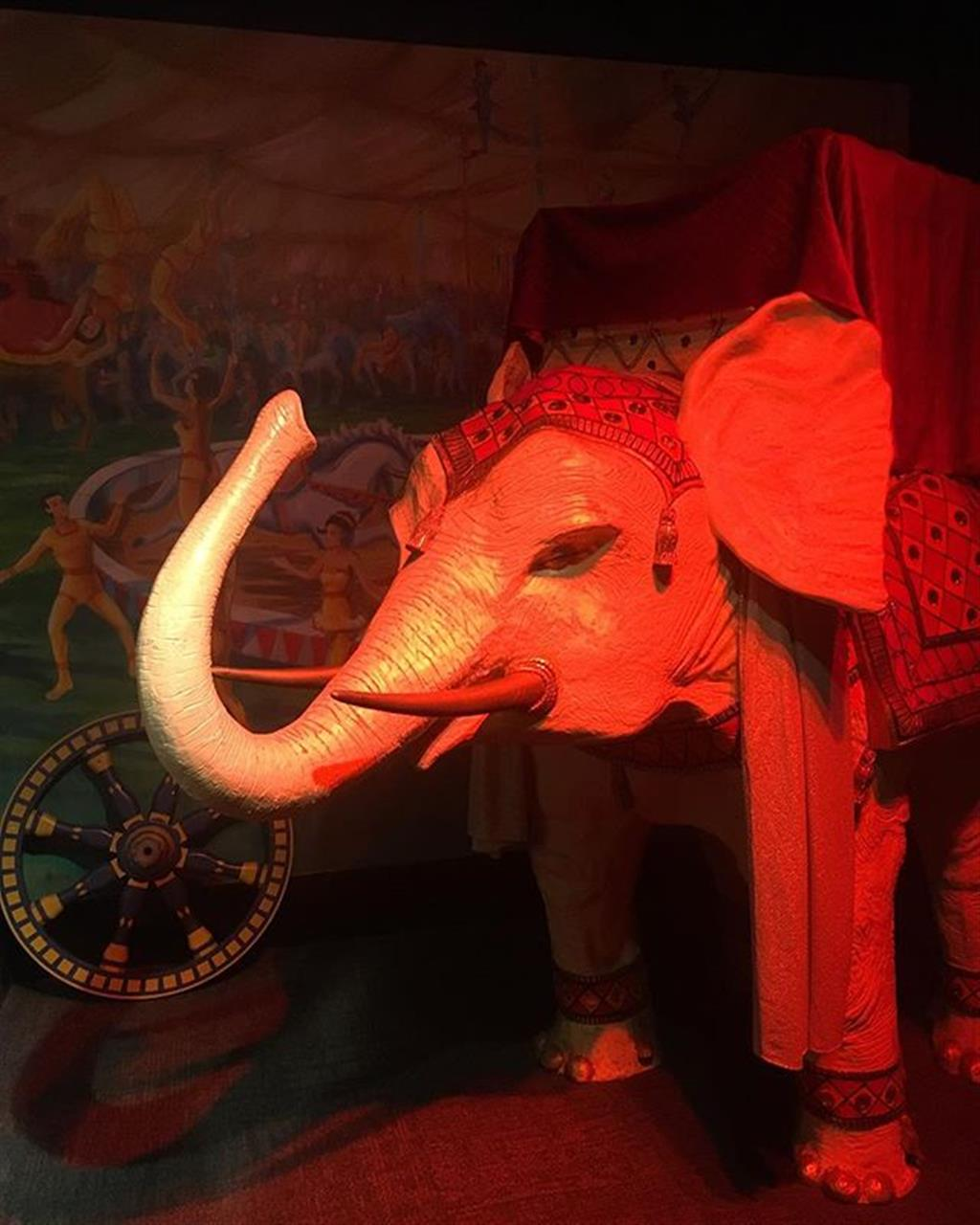 An elephant shown with their trunk up symbolizes a showering of good luck. @msichicago #chicago #circus #hydepark #leadingrelocal #bairdwarner #realestate #chicagoneighborhoods #chicagotourist
