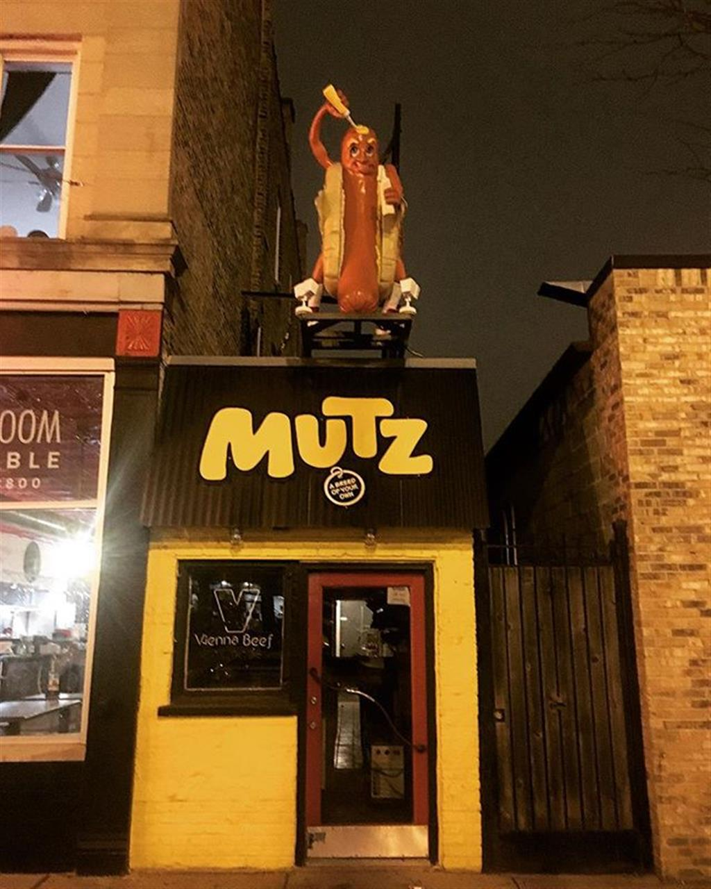 Like any good Chicago style hotdog is, the mascot atop #MutzChicago is a @viennabeef with #mustard only. #chicagostylehotdog #chicagohotdog #eatlocal #bairdwarner #leadingrelocal #hotdog #hotdogstand #wickerpark