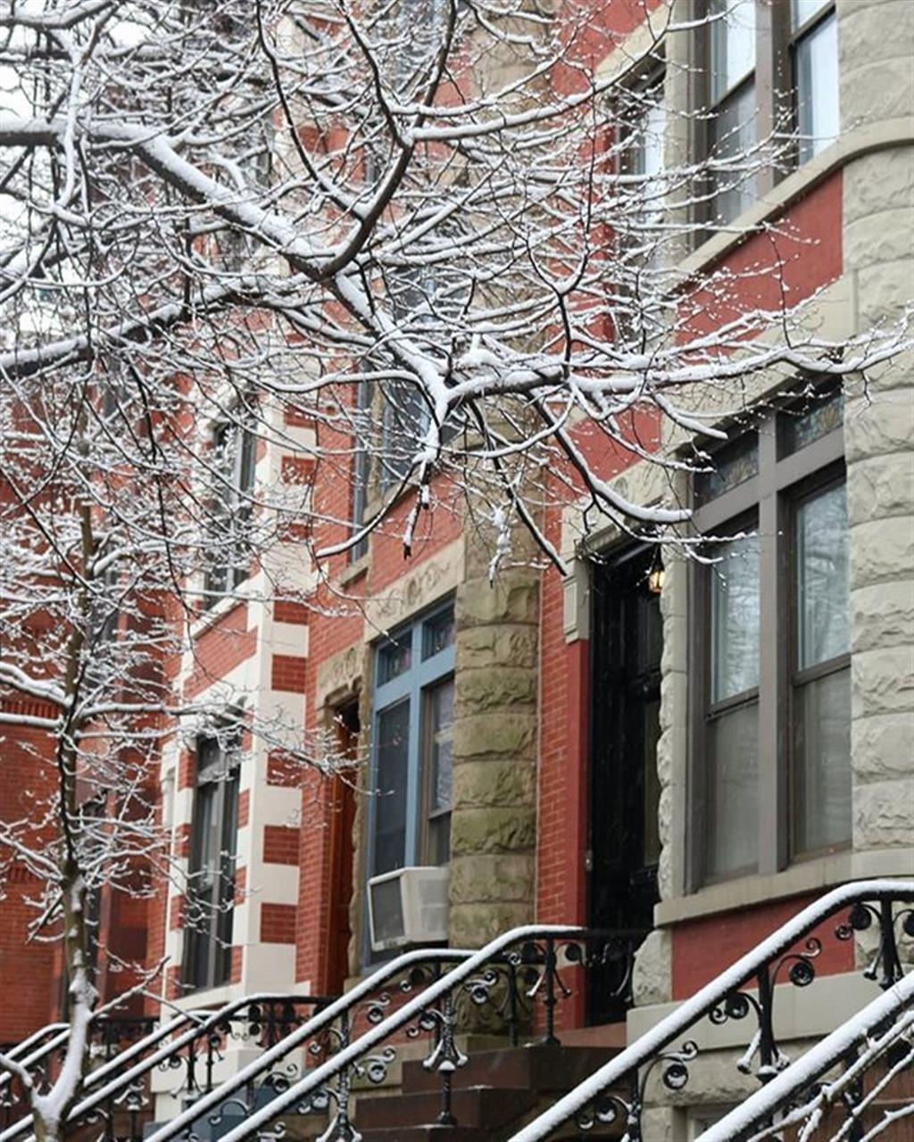 Snow came this morning.  #parkslopebrooklyn #parkslope #picballot #townhouses #colorful #Brooklynhouses #trees #tree_magic #stairs #staircases #windows #snowÔØä #naturelover #white #Exploreyourhood #leadingrelocal #beautiful #beautifulday