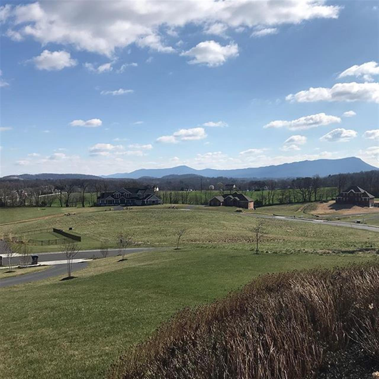 Started this beautiful spring day showing new buyers this amazing view (oh, and the awesome house behind it too!!) #thespringsatosceola #huntingtonsprings #olddominionrealty #rockinghamva #leadingrelocal #realestate #houseforsale #hopefullynotforlong
