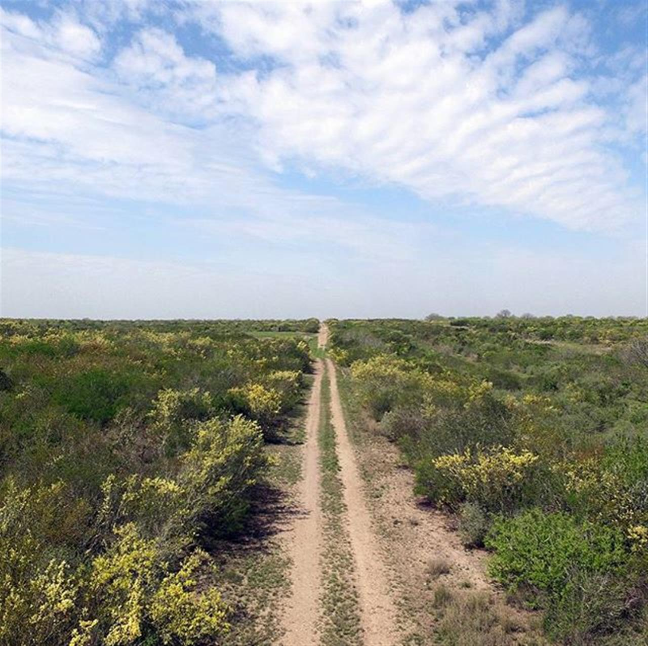 #RANCHROUNDUP 840 Ranch | Live Oak County | Approx. 840 acres listed by @westandswoperanches. The 840 Ranch is a well-located, high fenced hunting ranch less than an hour and fifteen minutes away from San Antonio. #TheVeryBest